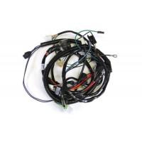 Forward Lamp Harness (Headlights & Park Lights)