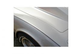 1982 Corvette Collector Edition Decals - Pin Stripes Only