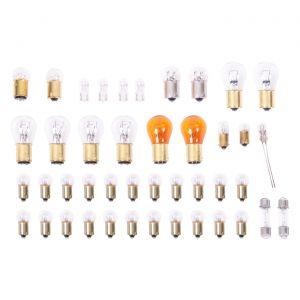 69 Light Bulb Kit