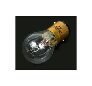 Exterior Light Bulb #2057