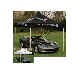 Stingray Corvette Canopy